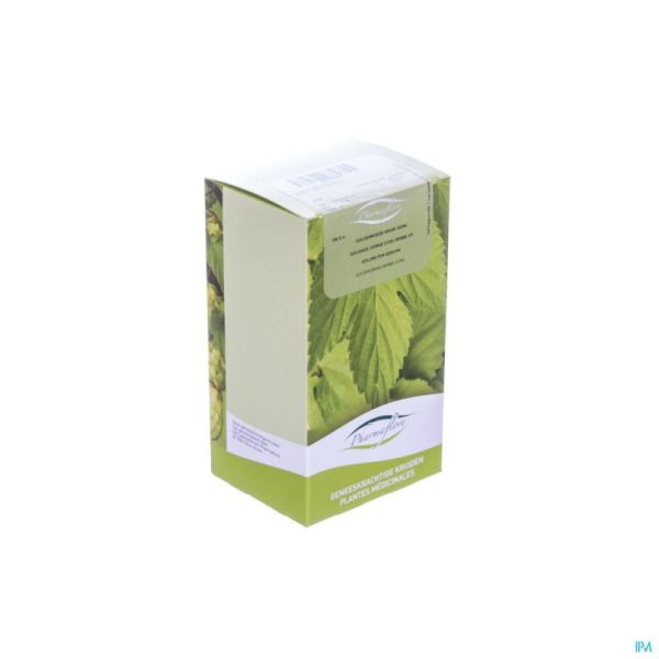 Verge D'or Herbe Coup Bt Pharmaflore 100 G